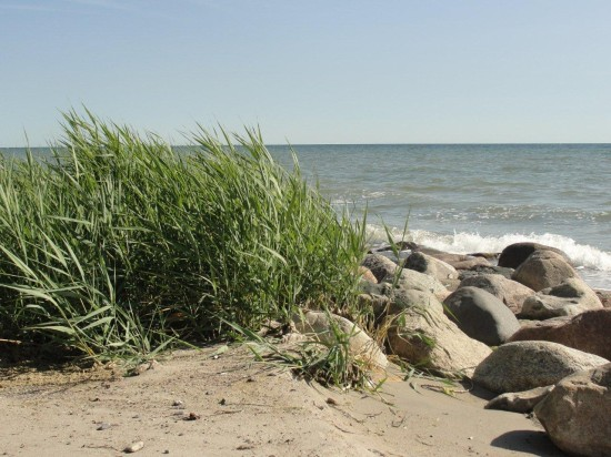 Dahmer Steilküste, der wilde Strand