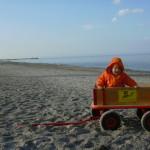 leerer-strand
