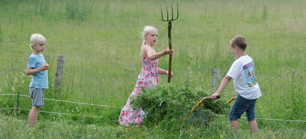 Bauernhof spielen